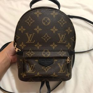 Louis Vuitton Palm Spring Mini